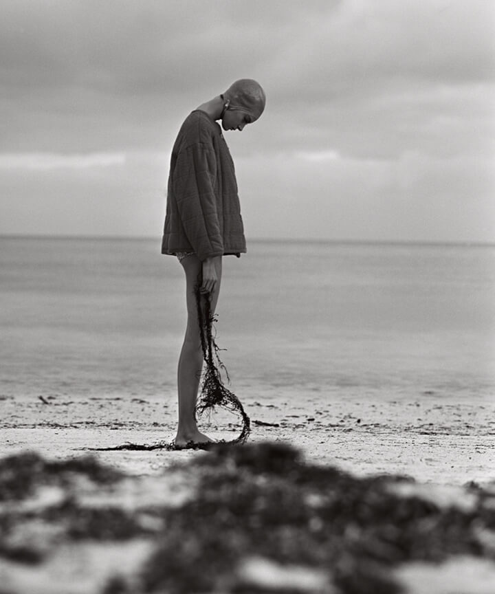 sokolsky©Nenna-seaweed