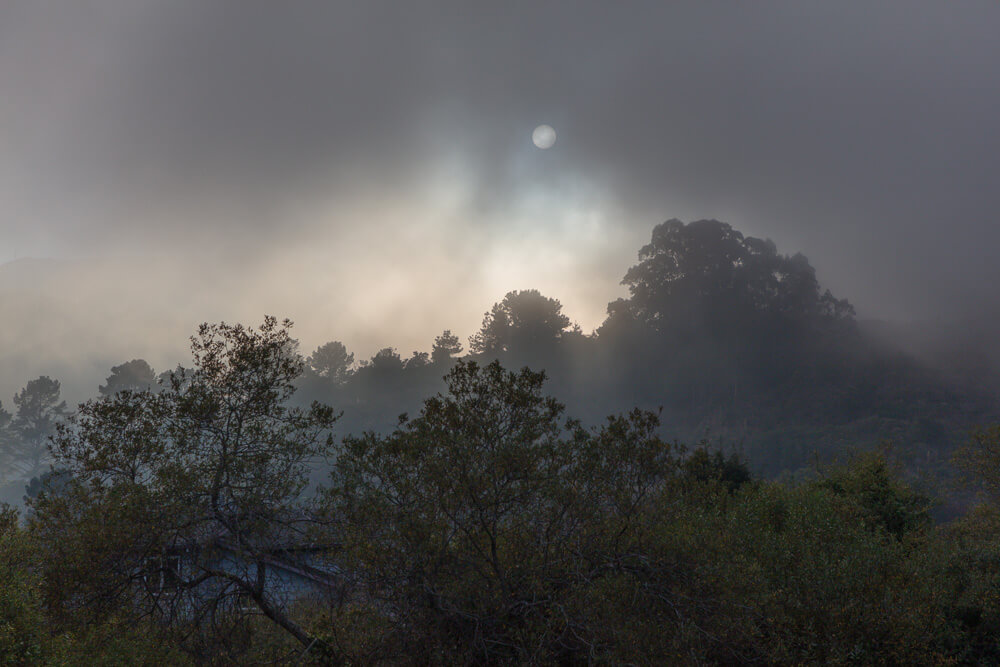 20191104_foggy-sun-sanchez_0003